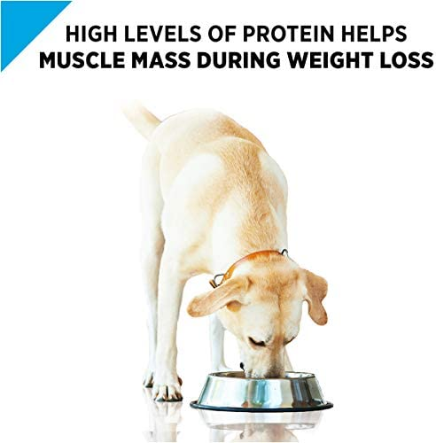 Purina Pro Plan Weight Management Adult Dry Dog Food & Wet Dog Food (Packaging May Vary) 4