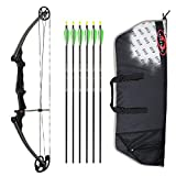 Genesis Archery Original Compound Bow (Right Hand, Black) with Case and Six NASP Official Arrows Bundle