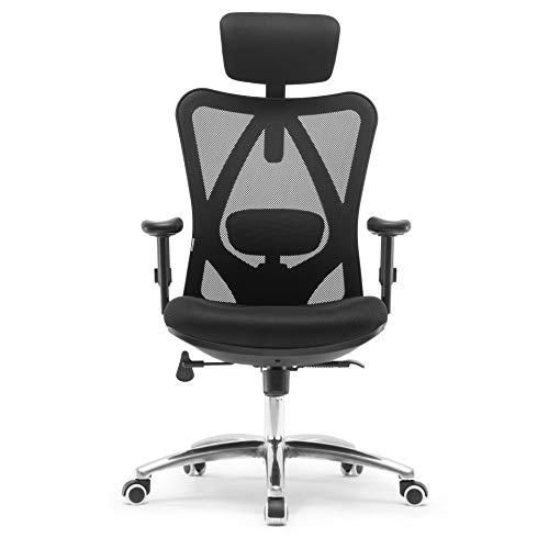 Sihoo Ergonomics Office Chair Computer Chair Desk Chair, Adjustable Headrests Chair Backrest and Armrest's Mesh Chair (Black)