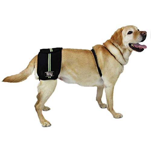 Walkin' Hip-EEZ - Hip Support System Designed for Dogs with Hip dysplasia and...