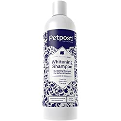 Petpost | Dog Whitening Shampoo - Best Lightening Treatment for Dogs with White Fur - Soothing Watermelon Scent - Maltese, Shih Tzu, Bichon Frise Approved - 16 oz.