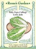 Baby Napa Cabbage Little Jade Seeds