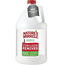 Nature's Miracle Cat Stain and Odor Remover-Best for Cat Stains