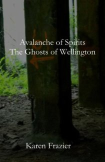 Avalanche of Spirits: The Ghosts of Wellington by [Frazier, Karen]