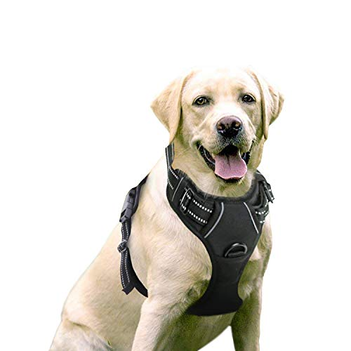 Rabbitgoo Dog Harness No-Pull Pet Harness Adjustable Outdoor Pet Vest 3M Reflective Oxford Material Vest for Dogs Easy Control for Small Medium Large Dogs 1