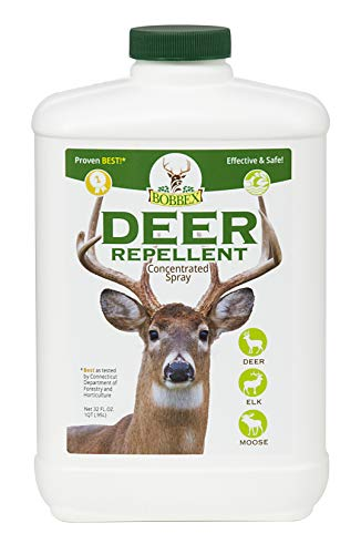 Bobbex B550100 Concentrated Deer Repellent, 32-Ounce
