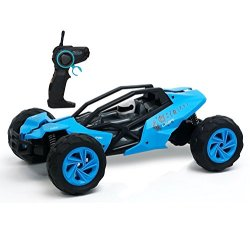 Remote Control Car : Racing Buggy - Blue - Fun and Easy to Control