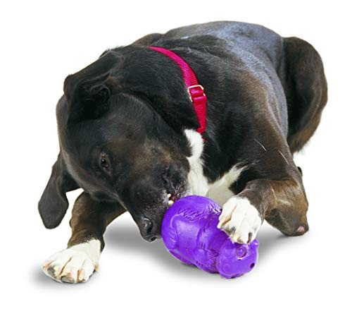 PetSafe Busy Buddy Squirrel Dude Dog Toy, Treat Dispensing Dog Toy, X-Small, Small, Medium and Large Sizes 1