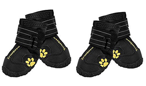EXPAWLORER Waterproof Dog Boots