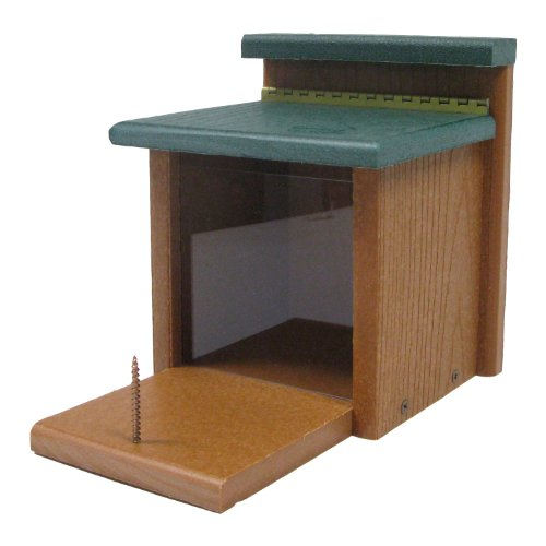 Woodlink Going Green Squirrel Munch Box Model GGSQBOX