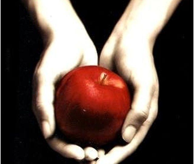 Amazon Com Twilight The Twilight Saga Book