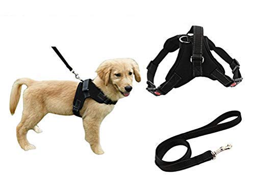 Heavy Duty Adjustable Pet Puppy Dog Safety Harness with Leash Lead Set...
