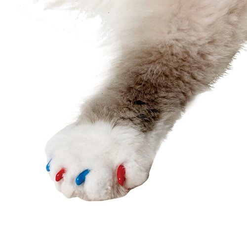 Soft Claws for Cats, Size Medium, Color Summer (Blue & Red)
