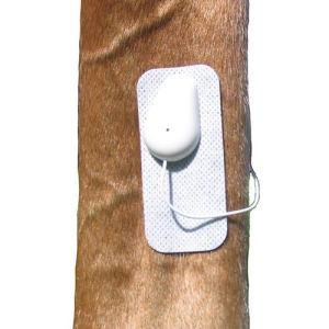 Microlief Under Wraps - Natural Pain Relief Therapy Patch for Equine Injury Prevention, Treatment, Recovery and Rehabilitation 6