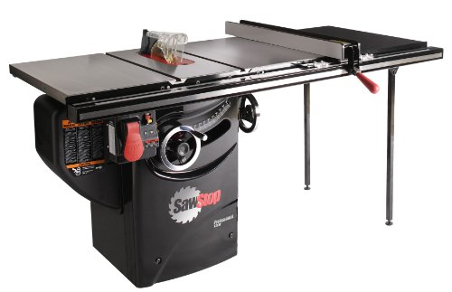 The 10 Best Table Saws