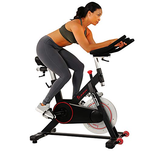 Sunny Health & Fitness AirBike