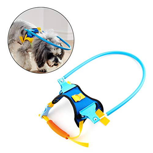 Haploon Blind Dog Harness Guiding Device, Pet Safe Halo Prevent Collision & Build Confidence Blind Dog Accessories (XS)