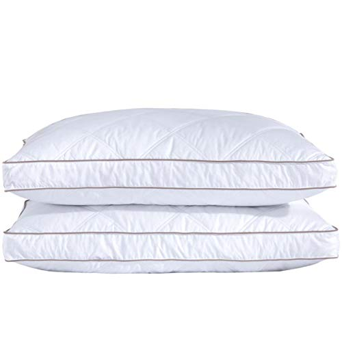 puredown Natural Goose Down Feather Pillows for Sleeping Down Pillow 100% Cotton Pillow Cover Downproof King Set of 2