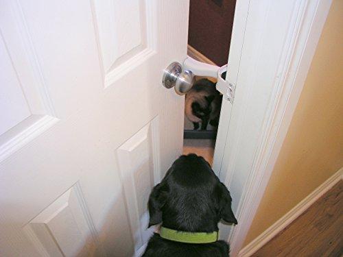 Latchnvent Pet Access Control Interior Door Prop Dog Proof Cat