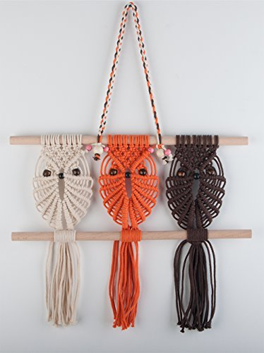 Eclectic Fun And Charming Owl Wall Decorations Home