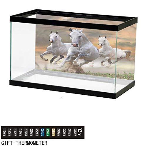 bybyhome Fish Tank Backdrop Horses,Mystical Sky Equestrian,Aquarium Background,36' L X 16' H(91x41cm) Thermometer Sticker