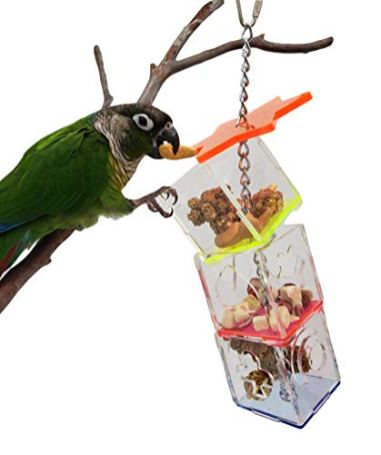 Tropical-Chickens-Parrot-Bird-Boredom-Buster-Forage-Box-Creative-Hanging-Treat-Foraging-Toy-Conure-Cockatiel-Small-and-Medium-Bird-Enrichment-Transparent-Acrylic-Food-Holder