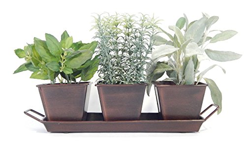 Kitchen Herb Garden (Chocolate) - 3 Metal Containers w Tray, 5 Herb Packets, Soil, Labels & Directions