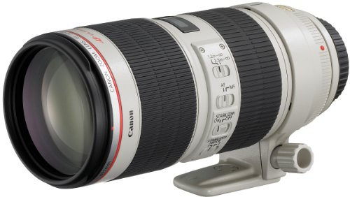 Canon EF 70-200mm f/2.8L IS II Telephoto Zoom Lens USM, Model EF70-200LIS2 – International Version
