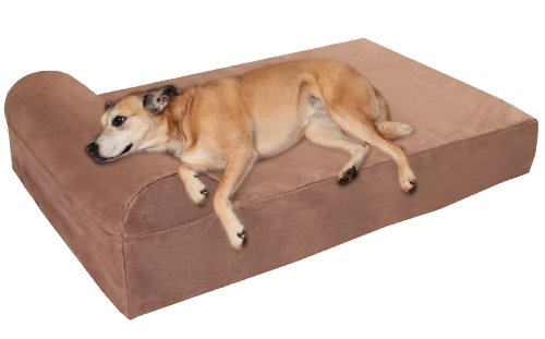 Best Therapeutic Dog Beds