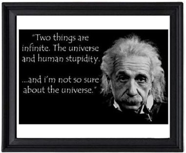 Amazon.com: EV Albert Einstein Human Stupidity Quote Picture Frame - Poster  - Print: Posters & Prints