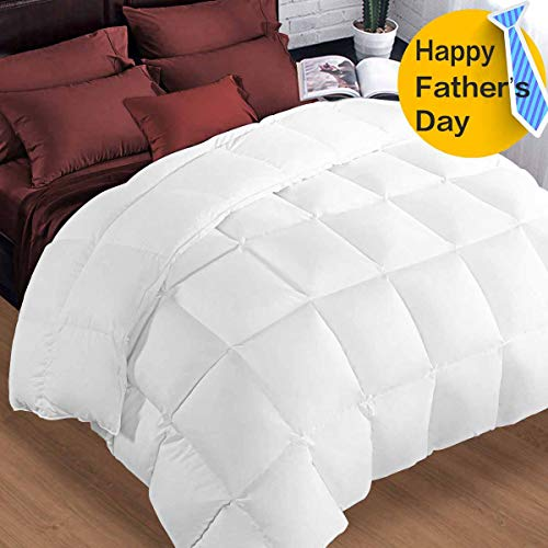 Queen Comforter Soft Summer Cooling Goose Down Alternative Duvet Insert 2100 Quilt with Corner Tab for All Season, Prima Microfiber Filled Reversible Hotel Collection,White,88 X 88 inch
