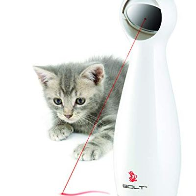 PetSafe Bolt – Automatic, Interactive Laser Cat Toy –...