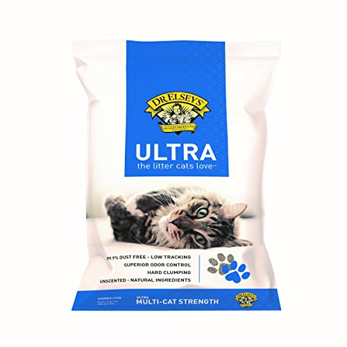 Precious Cat Pack Ultra Premium Clumping Cat Litter 40 Pound Bag (Two Packs)