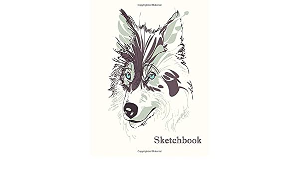 Sketchbook Cute Wolf Practice Drawing Paint Write Doodle 8 5 X 11 Large Sketch Pages Notes Sketching Pad Creative Diary And Journal Wolf Draw Notebook Notebooks Bashken 9781694473318 Amazon Com Books