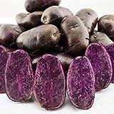 100 Pcs Purple Potato Seeds Purple Sweet Potato Delicious Nutrition Green Vegetable Seeds Home Garden NO GMO The Best Gift