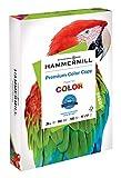 Hammermill Paper, Premium Color Copy Paper, 11 x 17 Paper, Ledger Size, 28lb Paper, 100 Bright, 1 Ream / 500 Sheets (102541R) Acid Free Paper