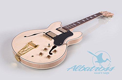 Albatross Guitars GK062 Semi Hollow Body Electric Guitar