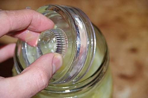 The-Handle-Weight-Fermentation-weights-with-handles-For-wide-mouth-mason-jars-4-pack
