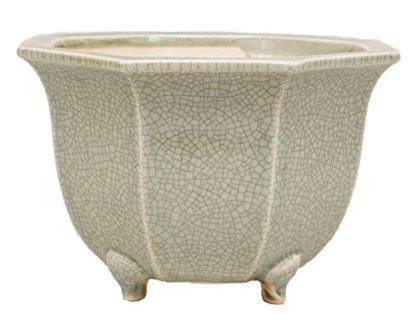 YUKIMONO Eimei Octagonal Bonsai Pot, 7.0-Inch