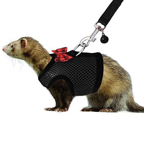 RYPET Small Animal Harness and Leash - Soft Mesh Small Pet Harness with Safe Bell, No Pull Comfort Padded Vest for Small Pet 1