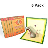 Mouse Glue Trap, 5 Pack Extra Large Rat Glue Traps, NEW VERSION Strongly Adhesive, Best Peanut Butter Scented Mouse Traps Glue Board for Mice & Rodent &Pests & Bug & Ant & Spider