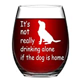 Stemless Wine Glass It's not really drinking alone if the dog is home Funny Wine Cup Best Gift for Dog Lover 15 oz