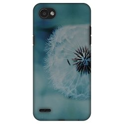 AMZER Slim Fit Handcrafted Designer Printed Hard Shell Case Back Cover for LG Q6/ Q6 Plus - Dandelion Close By