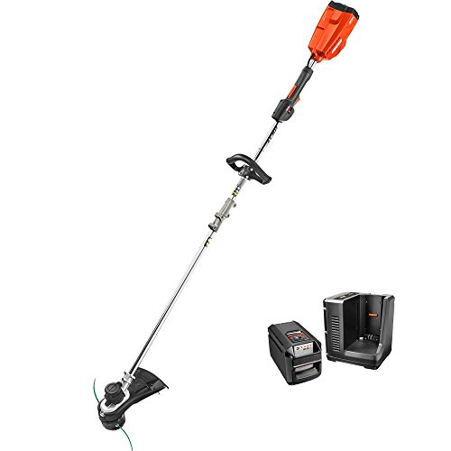 Echo CDST-58V2AH 58-Volt Lithium-Ion Brushless Cordless String Trimmer - 2.0 Ah Battery & Charger Included