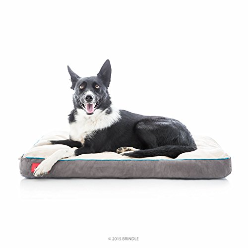 Brindle Soft Shredded Memory Foam Dog Bed with Removable Washable Cover - 34in x 22in - Khaki