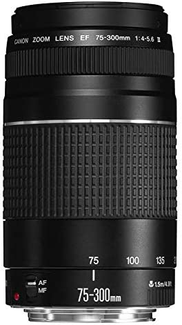 Canon EF 75-300mm f / 4-5.6 III Telephoto Zoom Lens for Canon SLR Cameras