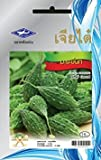 Bitter Gourd (10 Seeds) Seeds - 1 Package From Chai Tai, Thailand