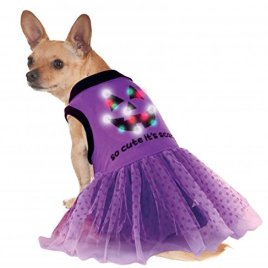 Rubies Costume LED Light-Up Halloween Dog Costume Dress