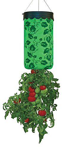 Topsy-Turvy-Upside-Down-Tomato-Planter-As-Seen-On-TV-Pack-of-2
