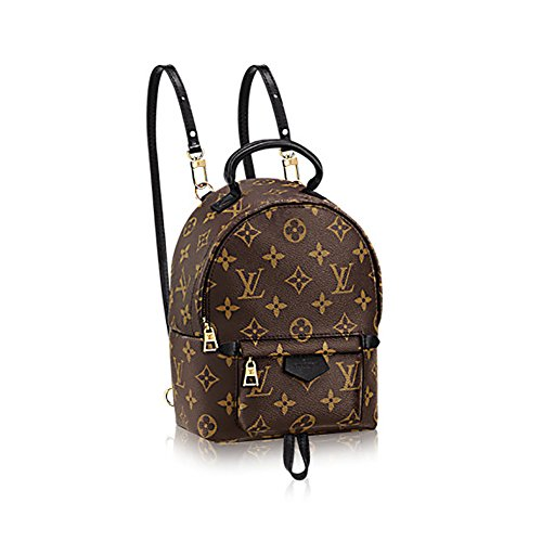 Authentic Louis Vuitton Monogram Canvas Palm Springs Backpack Mini ... 32c20ba267cb7